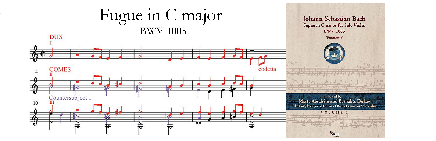 Chaconne BWV 1004 book